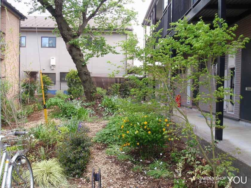 雑木林風の日壁の庭。