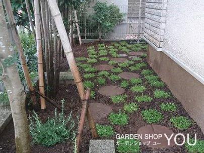 家の脇も庭の一部。
