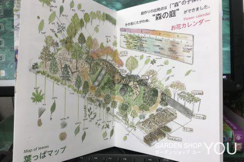 「森の子保育園」の園庭《前編》~手入れビフォー~